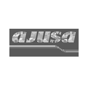 Ajusa